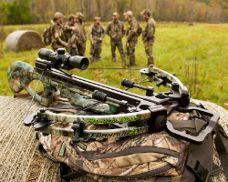 Crossbow Laws
